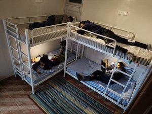 Sleeping in Kasauli Hostel room 4 persons